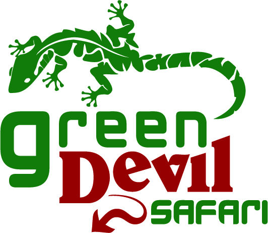 Green Devil Safari